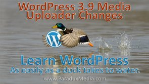 Video thumbnail for vimeo video WordPress Tutorials: 3.9 Media Changes - Paradux Media Group